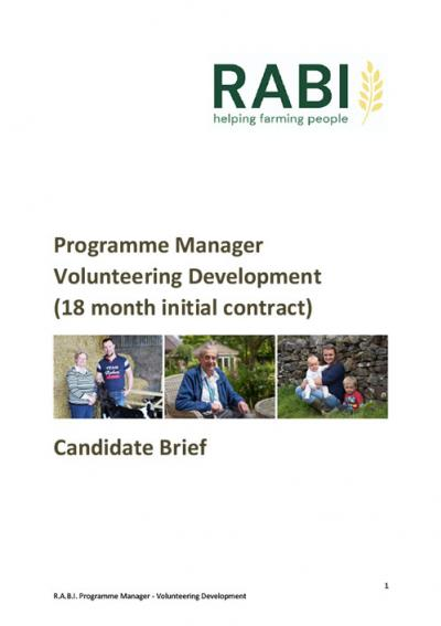 RABI Programme Manager job pack