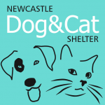 Newcastle Dog & Cat Shelter.